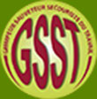logo-gsst